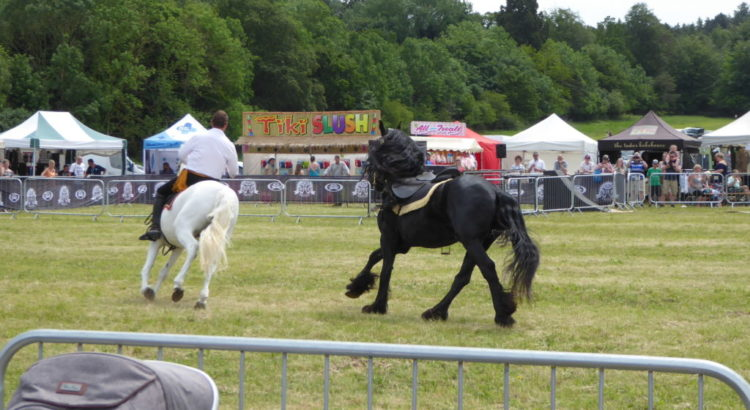 Elveden Country Show and Festival of Dogs June 2019 - Iceni Minors